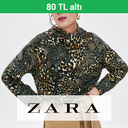 Zara Sweatshirtler