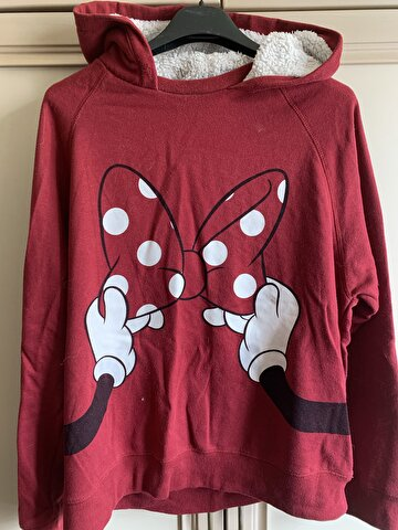 Bordo Walt Disney World Sweatshirt